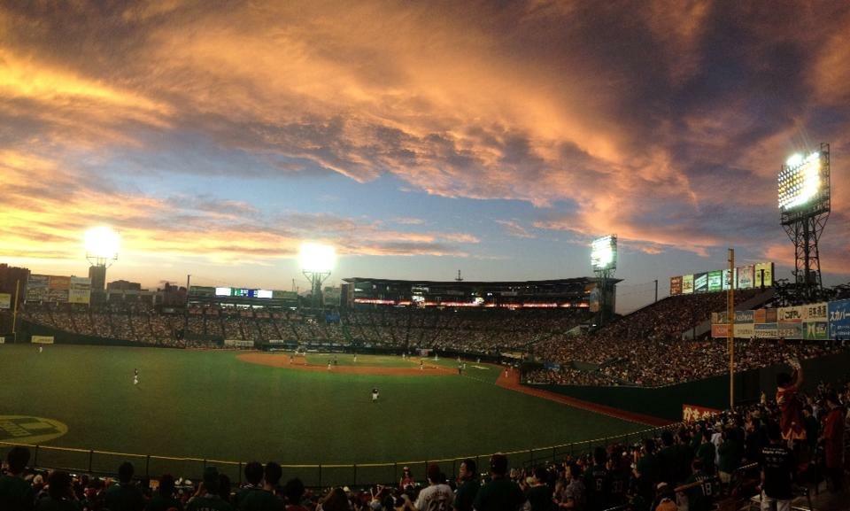 野球観戦にはどんな魅力がありますか?その質問にお答えします!